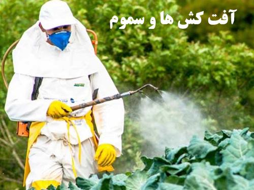 پاورپوینت آفت كش ها و سموم رشته مهندسی کشاورزی