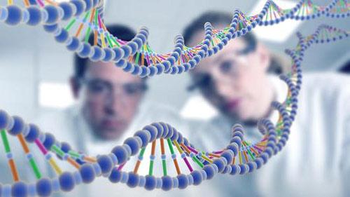 پاورپوینت آماده الگوریتم ژنتیک و برنامه نویسی ژنتیک