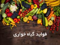 پاورپوینت با موضوع فواید و دلایل گیاهخواری انسان و اصول تغذیه سالم