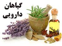 دانلود پاورپوینت گیاهان دارویی و تاثیر آنها بر بیماری ها