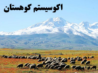پاورپوینت اکوسيستم کوهستان و پوشش گیاهی و حیات جانوری آن