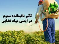 پاورپوینت تأثیر باقیمانده سموم دفع آفات نباتی در ایمنی مواد غذایی